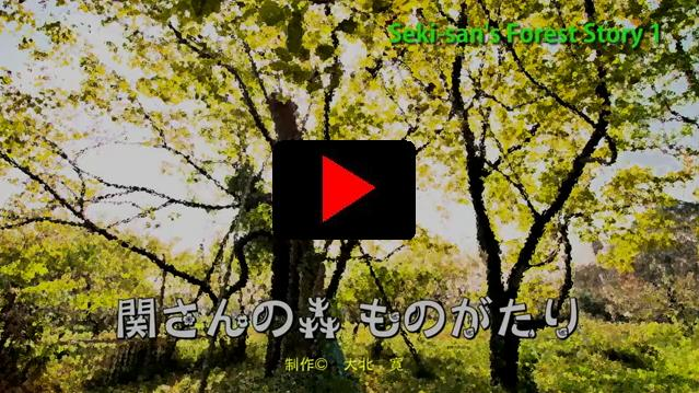 Sekisans_forest_story1