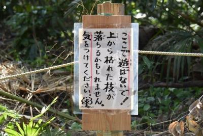 200414seki-3